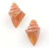 Lamp Bead Nobilis Shell 2Pc 25mm Orange Cremesicle